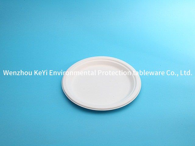 biodegradable compostable sugarcane disposable paper plate 10in
