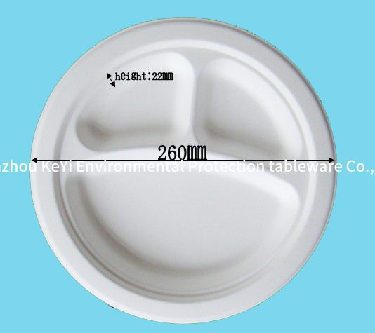 10 Years Factory 100% Biodegradable/BIO Sugarcane Bagasse Paper Raw Material Compostable Food Container Plates
