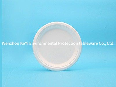 Earth friendly to go 9in round plate(narrow edge)