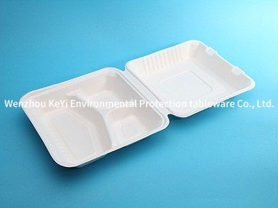biodegradable disposable 8in-3sect. paper clamshell
