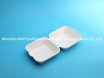 eco friendly food packaging 6in clamshell