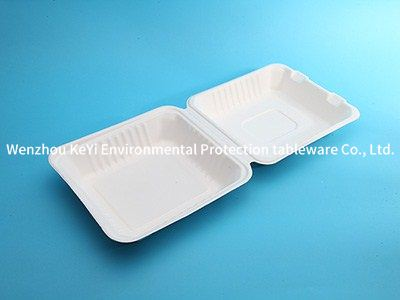 eco-friendly disposable lunch box 8inch