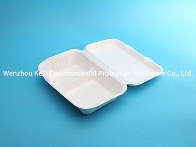 biodegradable paper pulp box bagasse food container 96-2