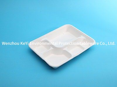 compartment disposable food  tray P-12