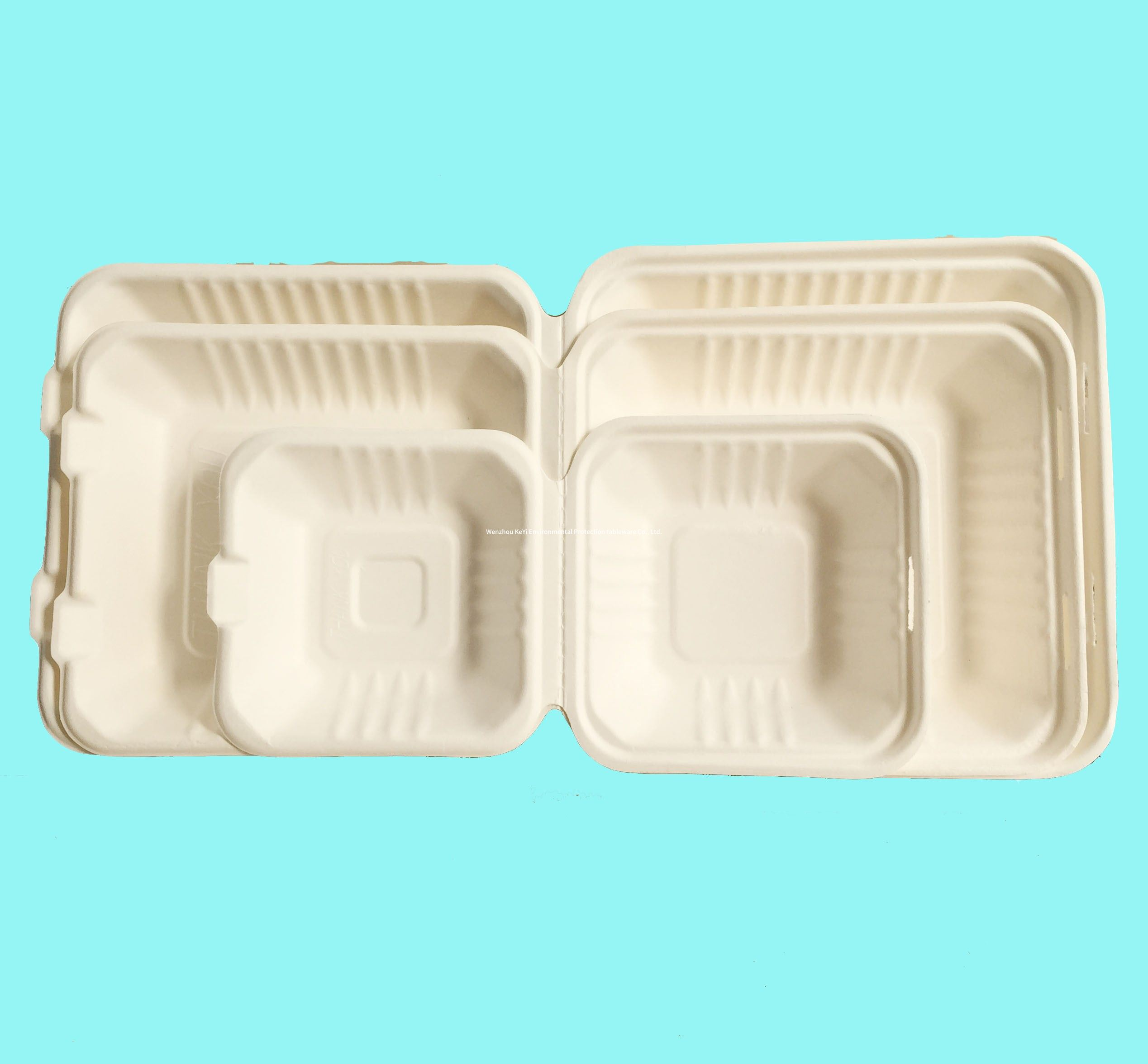 Biodegradable, Plant-Based, Tree Free, Disposable sugarcane clamshell