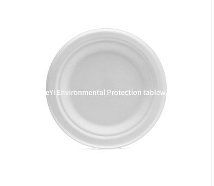 Compostable Biodegradable Sugarcane Paper Custom Disposable Plate